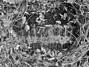Das Grab von Hermann Ungar